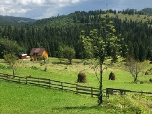 Cabana Poiana Dealul Frumos - accommodation in  Apuseni Mountains, Motilor Country, Arieseni (26)